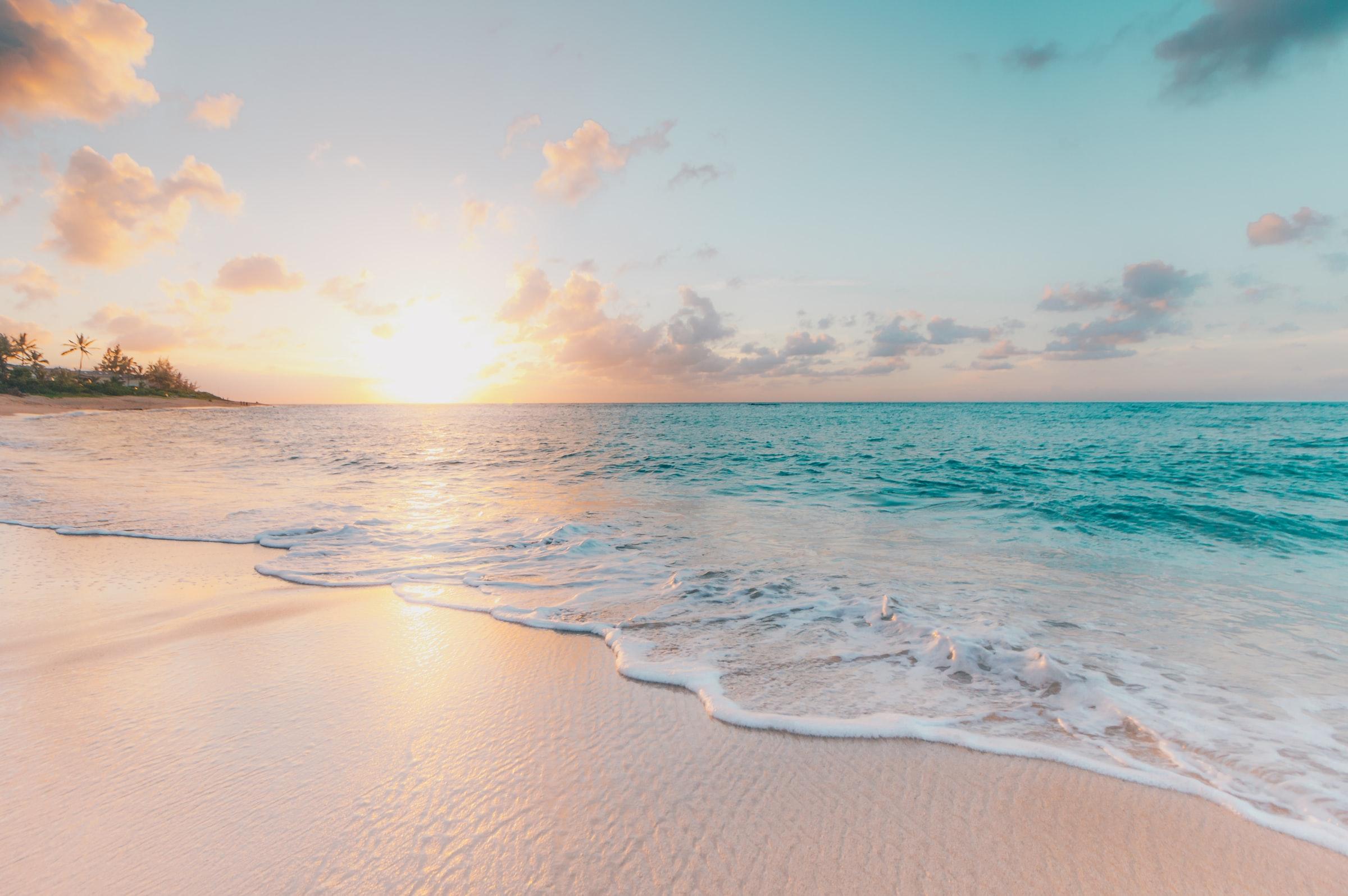 beach online scheduling software success